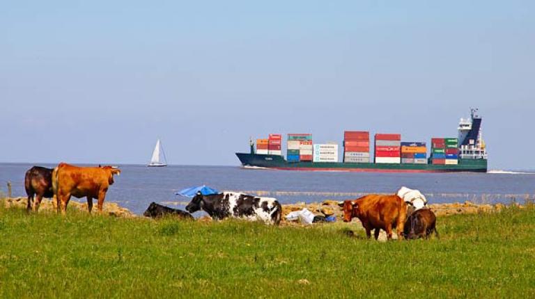 Bei Importen muss Verbraucherschutz oberstes Gebot sein.