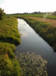 Dieser Bachlauf ist eindeutig von wasserwirtschaftlicher Bedeutung, hier gelten auf jeden Fall die Regelungen in Gewässerrandstreifen, die als Pufferzone verhindern sollen, dass Dünge- und Pflanzenschutzmittel in die Gewässer eingebracht werden.