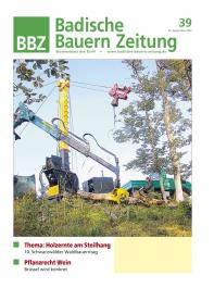 September 2012: Die BBZ im heutigen Erscheinungsbild.