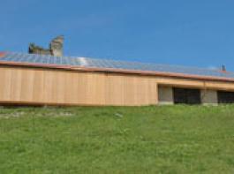 Kontroverse um K�rzung der Solarf�rderung