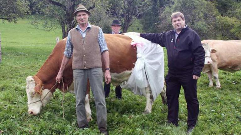 Gemeinsam mit Landwirt Johann Huber zeigte der oberbayerische Bezirkspr�sident Anton Kreitmair m�gliche Folgen der D�ngeverordnung f�r Almk�he auf.