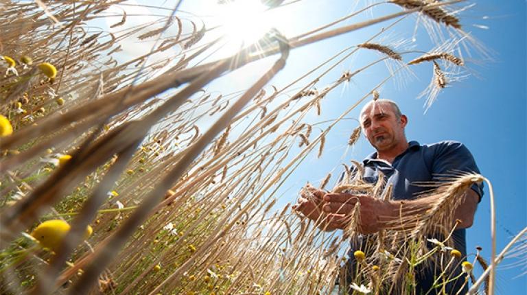 Werden Sie jetzt Mitglied im Bayerischen Bauernverband und profitieren Sie von den Vorteilen einer starken Gemeinschaft