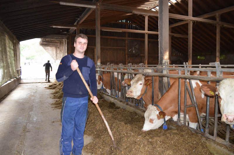 Betriebshelfer landwirtschaft lohn