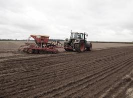 Herbstbestellung: Aufgrund des sparsamen Dieselverbrauchs sind die Fendt-Varios nach Erfahrung des Betriebes für alle landwirtschaftlichen Arbeiten gut einsetzbar.