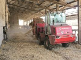 Entmisten und Einstreuen einer Jungrinderbox auf dem Gelände der Milchviehanlage. Der Ende 2010 gekaufte 3070 hatte im Herbst 2013 schon 7.550 Stunden auf dem Zähler.© Möbius
