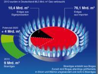 Bioerdgas-Potenziale_FNR.jpg