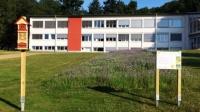 Blühstreifen am Haus der hessischen Landwirtschaft in Friedrichsdorf