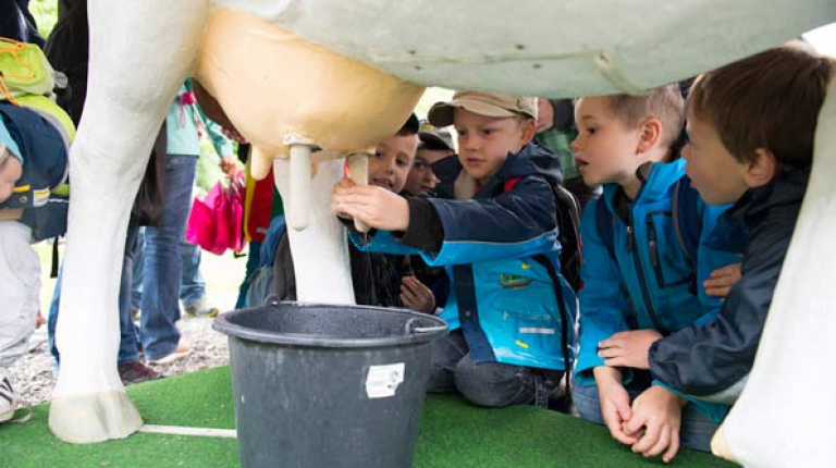 Im Juni geht es f�r Kinder wieder auf zum Kindertag auf bayerische Bauernh�fe!