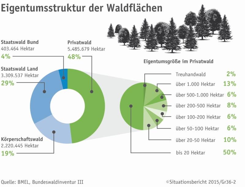 Wie Viel Prozent Wald Hat Deutschland
