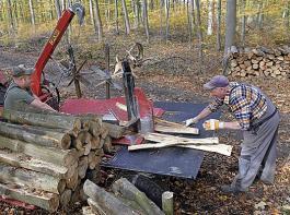 Die Bewirtschaftung des eigenen Waldes wird für die Eigentümer immer aufwändiger - auch durch das neue Landesforstgesetz.