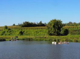 Idyllisch zeigen sich die Fischteiche vor allem bei sonnigem Wetter. Sie sind ein wahres Biotop: Schwäne, Storche und Reiher sind hier oft gesehene Gäste.