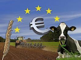 Durch die Erlaubnis, bis zu 70 Prozent statt bislang 50 Prozent der Direktbeihilfen vorauszahlen zu können, soll die Liquidität der Bauern erhöht werden.