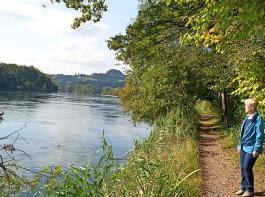 """Schöner Ausblick am  """"Alten Rhein"""" bei Rüdlingen."""