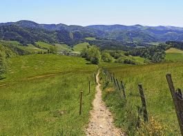 Ausblicke und vorwiegende schmale Pfadebegeistern auf der Tour ins Tal.