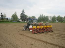 Der Zuchtfortschritt ist auch bei Mais geradezu Voraussetzung für eine umweltverträgliche und wettbewerbsfähige Ackerkultur.