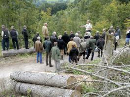 Die Tätigkeiten der staatlichen Forstverwaltung in Baden-Württemberg müssen eingeschränkt werden.