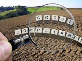 Angesichts der Erschwernisse durch die Corona-Krise hat die EU-Kommission für das GAP-Antragsverfahren  2020 Kontrollerleichterungen beschlossen.