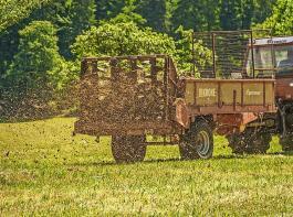 Die Sperrzeiten für Festmist von Huf- und Klauentieren oder Kompost wurden um zwei Wochen verlängert und vorgezogen.