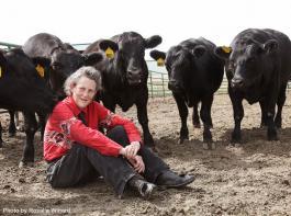Temple Grandin betrachtet  die Welt aus der Sicht der Tiere.