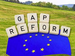Der Europäische Rechnungshof hat reichlich auszusetzen an den Plänen der EU-Kommission.