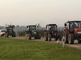 Im Schlepperkonvoi  zum Etappen-Treffpunkt Allmannsweier: Es kamen rund dreimal mehr Traktoren, als die Organisatoren angenommen hatten.