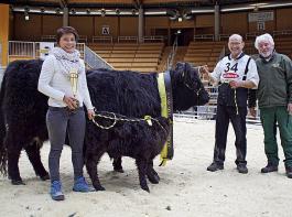 Galloway-Rassesiegerin wurde die Kuh Carolina (V Caruso) der Ederle GbR aus Bissingen. Mit Dagmar und  Karl Ederle freut sich  Horst Kraft, der Vorsitzende des Bundesverband Deutscher Galloway-Züchter (v.l.).