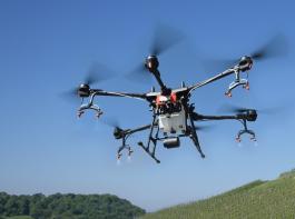 Rund 15 Minuten braucht die Sprühdrohne  DJI Agras T16 für einen Hektar Rebfläche.  Sie fliegt bis zu 12,8km/h schnell.