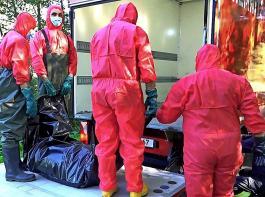 Fallwild, das potenziell mit ASP infiziert ist, muss professionell geborgen werden. Bis zum 23. September waren 29Fälle bestätigt.