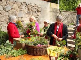 Bei Regina Albrecht vom Verein Kräuterdorf Oberried waren all diejenigen gut aufgehoben und angeleitet, die einen eigenen traditionellen Kräuterbüschel binden wollten. Ein Angebot mit enormem Zulauf.