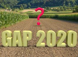 Weil die finanziellen Rahmenbedingungen für eine  neue GAP noch nicht klar sind, verzichteten die Länderminister bei ihrer Konferenz  (AMK) auf  detaillierte Diskussionen darüber.