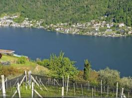 Terrassenweinberge überragen den Luganer See; Hagelschutznetze sind in der ganzen Region notwendig. Meinard C. Perler bewirtschaftet in Genestrerio 24Hektar mit mehr als 20Rebsorten, darunter 65Prozent Merlot (r.). Ivo Monti (Mitte) führt die Cantina Monti. Er hat sich in Bordeaux und Beaune (Burgund) weitergebildet. Er bewirtschaftet fünf Hektar Terrassenweinberge.