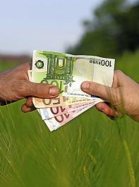 Die Landwirtschaftsminister der Bundesländer sind sich nicht einig über die Verteilung der EU-Fördermittel für die Entwicklung des  ländlichen Raums (ELER).