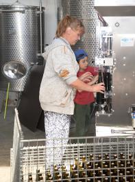 Die Abfüllanlage in der Winnica Wieleczka, ein Weingut, das auf biodynamischen Anbau setzt.