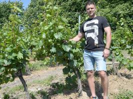 Miroslaw Jaxa Kwiatkowski von der Winnica Srebrna Góra, ein Weingut mit 28 Hektar.