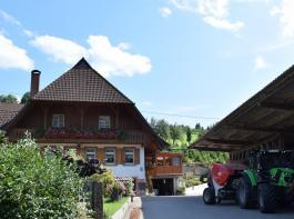 Der Lunzenhof befindet sich am Ortseingang von Oberharmersbach.