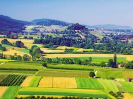 Unter anderem mit dem Ziel, eine vielfältige Kulturlandschaft zu erhalten, tritt die Regionalwert AG um Christian Hiß an. Sie wirbt auf Plakaten und in der Außendarstellung dazu mit  diesem Blick  auf die Staufener Burg und das Dorf Ballrechten.