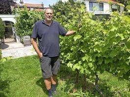 Wilco Venhuizen vom Weingut Bilderhof setzt auf Weine von pilzwiderstandsfähigen Rebsorten, darunter auch Freiburger Züchtungen des Staatlichen Weinbauinstitutes.