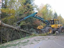 Den Waldbauern ist dringend anzuraten, genau darauf zu achten, was sie im Rahmen ihrer Verkehrssicherungspflicht zu tun haben.
