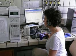 Arbeit am Gaschromatographen mit Schnüffeldetektor.