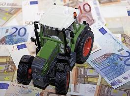 Bauerneinkommen und Betriebsstrukturen weisen in Europa eine hohe Bandbreite auf.