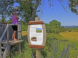 Von der Aussichtsplattform an der Station zur Gerste schweift der Blick über die Korn- und Wiesenfelder der Baar.