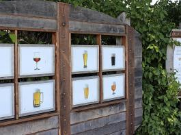 Zylindrisch oder kelchartig, Krug oder Pokal, Kölschglas oder Tekubecher? Beim Wissenstest über Biergläsertypen gibt's manche  Überraschung.