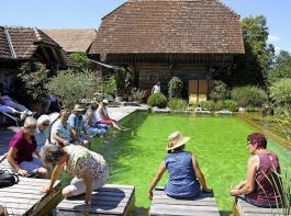 Am Schwimmteich hinter dem Haus war es bei der sommerlichen Hitze gut auszuhalten. Einige Teilnehmerinnen ließen es sich nicht nehmen, die Beine in das Wasser zu halten.