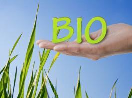 Verbände des Öko-Landbaus und der ökologischen Lebensmittelwirtschaft wollen nicht annehmen, was ihnen Brüssel als Vorschlag für neue Öko-Regeln in der EU reicht.