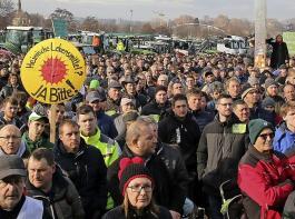 Rund 1000 Traktoren fuhren laut Polizei auf dem Cannstatter Wasen auf.