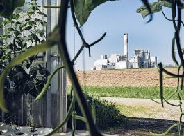 Blick vom Gewächshaus zum Werk. Über Rohre wird das gewonnene CO2 in eine 400Meter entfernte Gärtnerei geleitet, um dort das Pflanzenwachstum von Tomaten, Gurken und Salaten zu steigern.