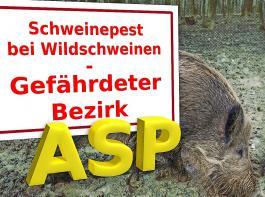 Werden  aufgrund eines ASP-Ausbruchs bei  Wildschweinen  seitens der Behörden  Nutzungsbeschränkungen für  land- und forstwirtschaftliche Flächen angeordnet, so  sind  staatliche Entschädigungen möglich.