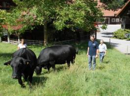 Mehr als 50 Jahre hält der vielseitige und innovative Bergbauernhof von Familie Wälde schon Angus-Kühe.