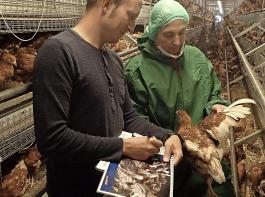 Ein Landwirt und Dr.Christiane Keppler beurteilen mit Hilfe des MTools den Tierbestand.