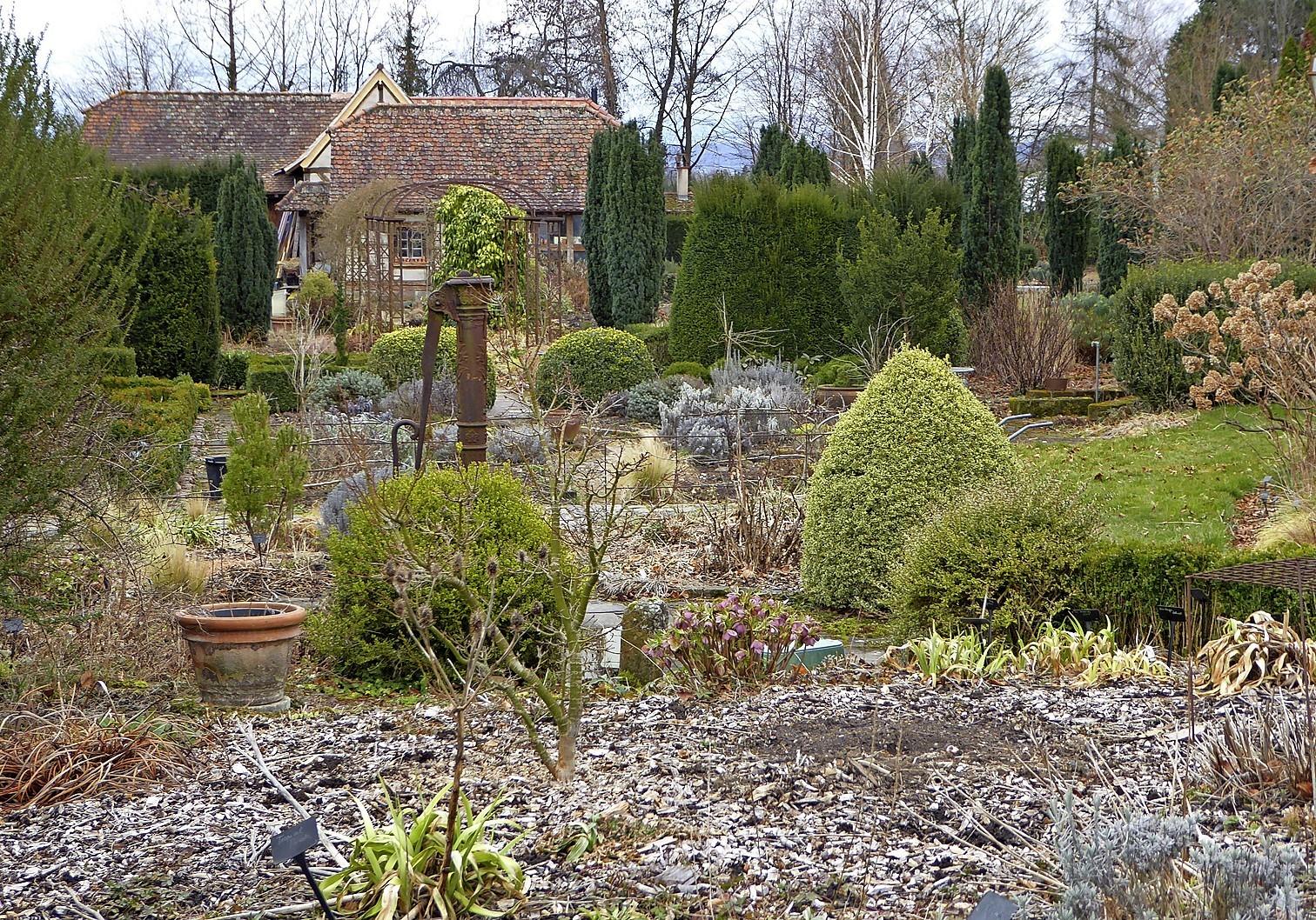 Winterschonheiten Im Garten Dorf Und Familie Badische Bauern